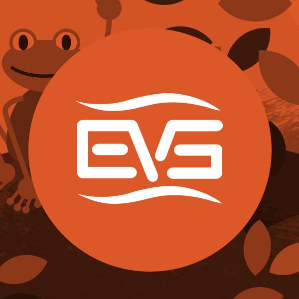 Start_EVS